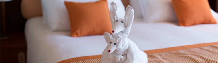 Carnival Valor towel-animal-jpg